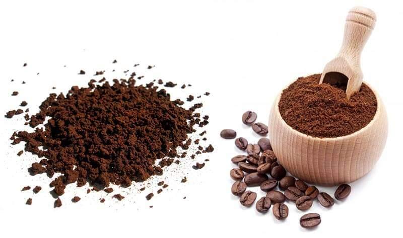 Café infusé Café instantané